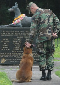 Wd being petting in front of memorial
